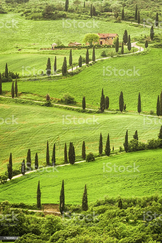 Winding road to agritourism in Italy on the hill, Tuscany royalty-free stock photo