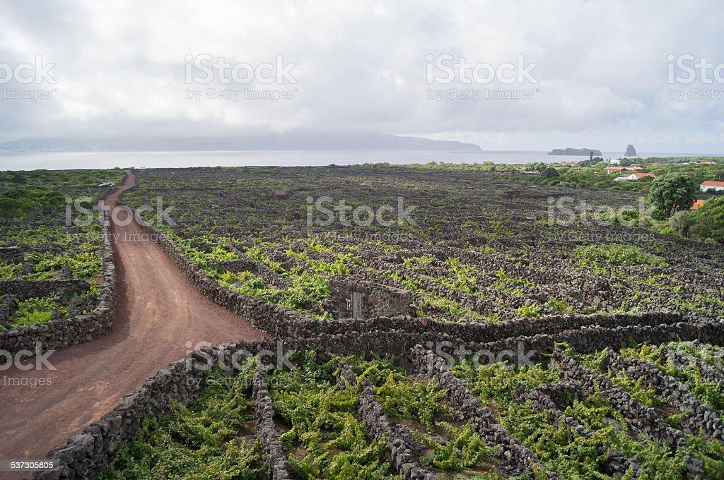Winding roads stock photo