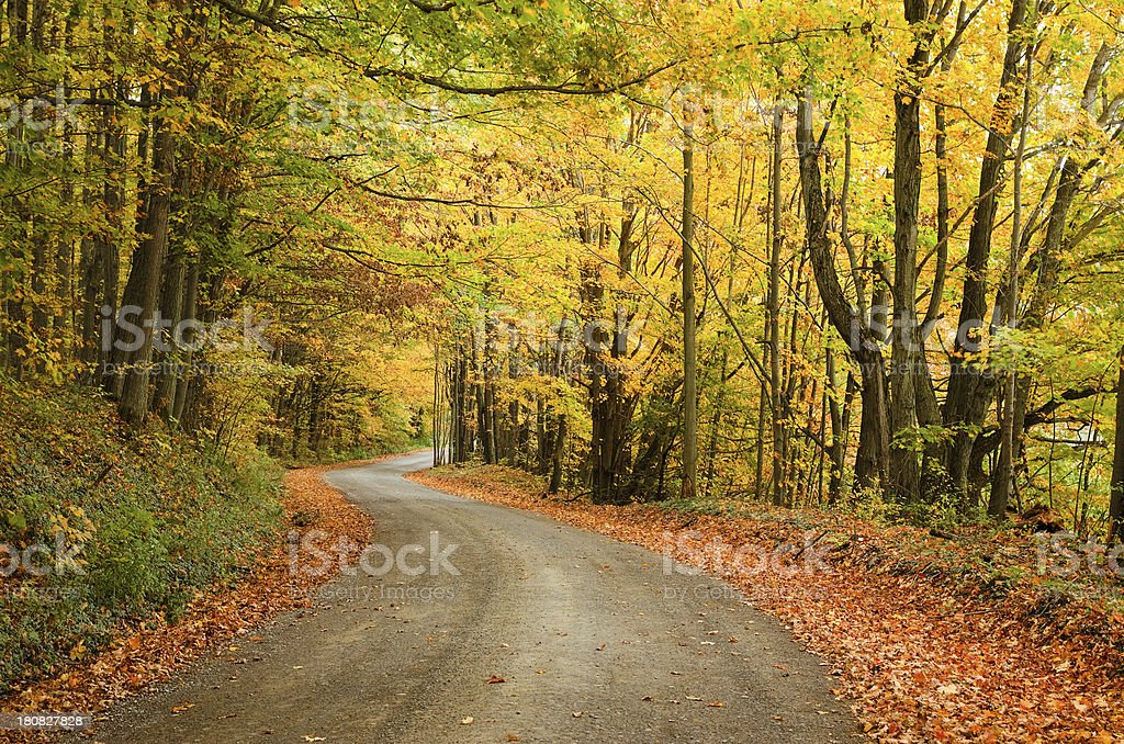 Winding rural road with fall colors royalty-free stock photo