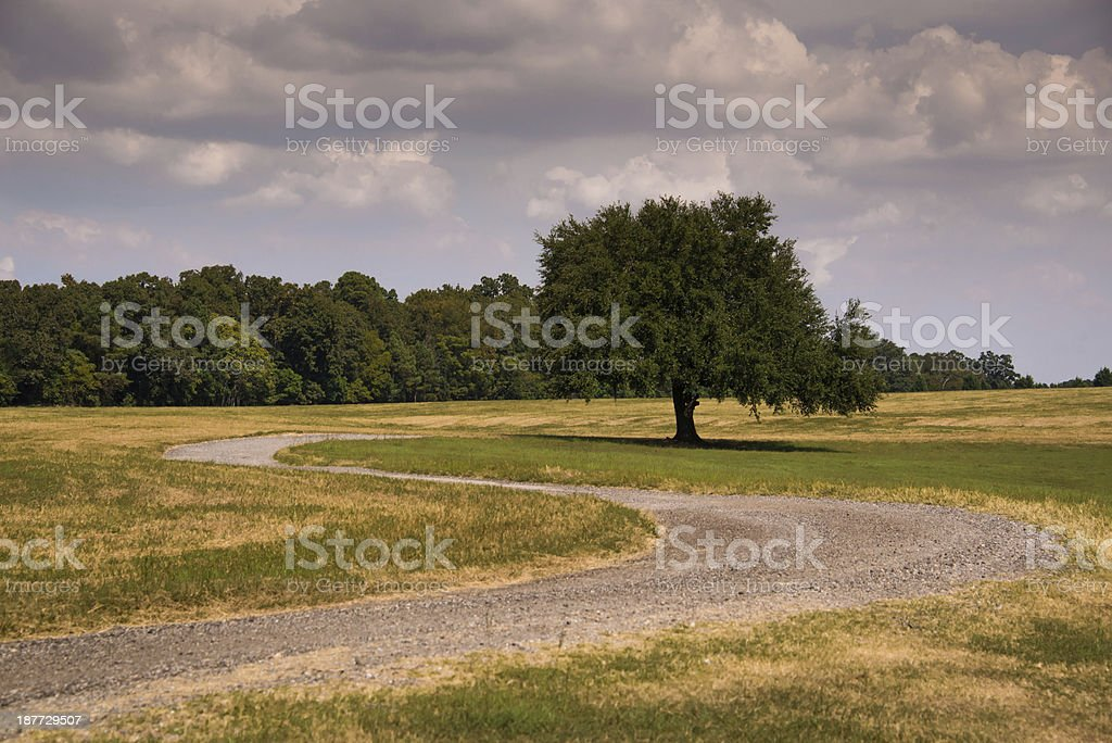 Winding South Caroina Country Road royalty-free stock photo