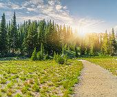 winding trail to MT.Rainier