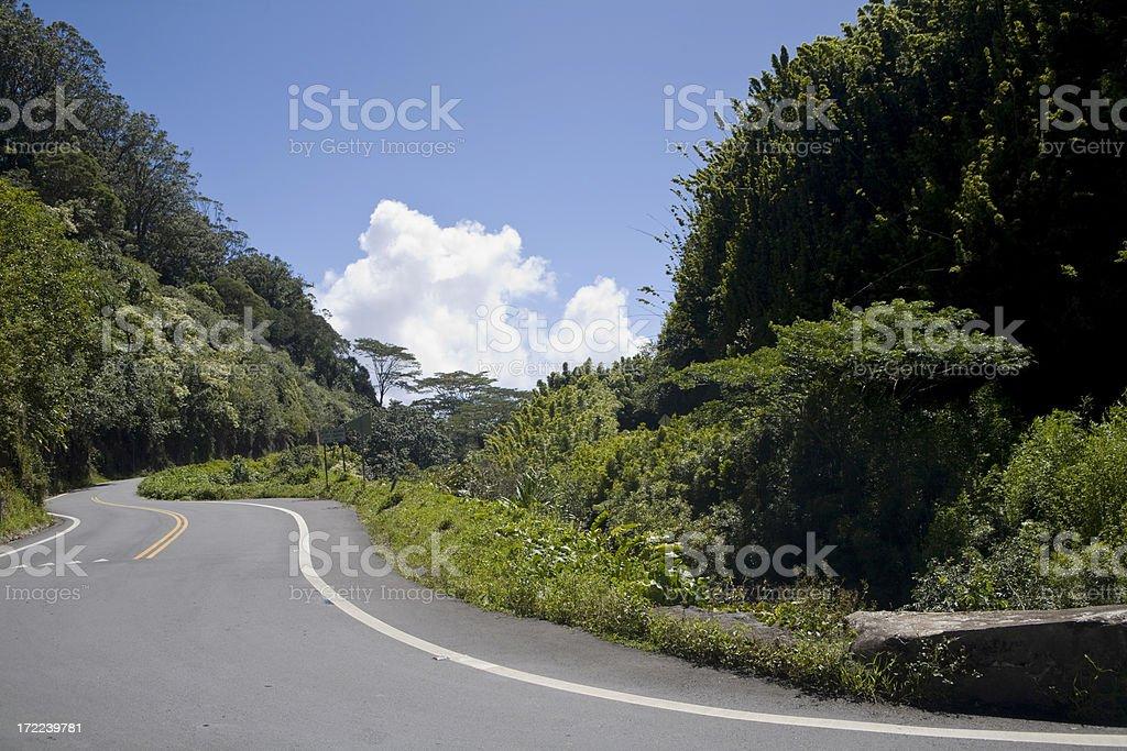 Winding Two Lane Tropical Highway stock photo