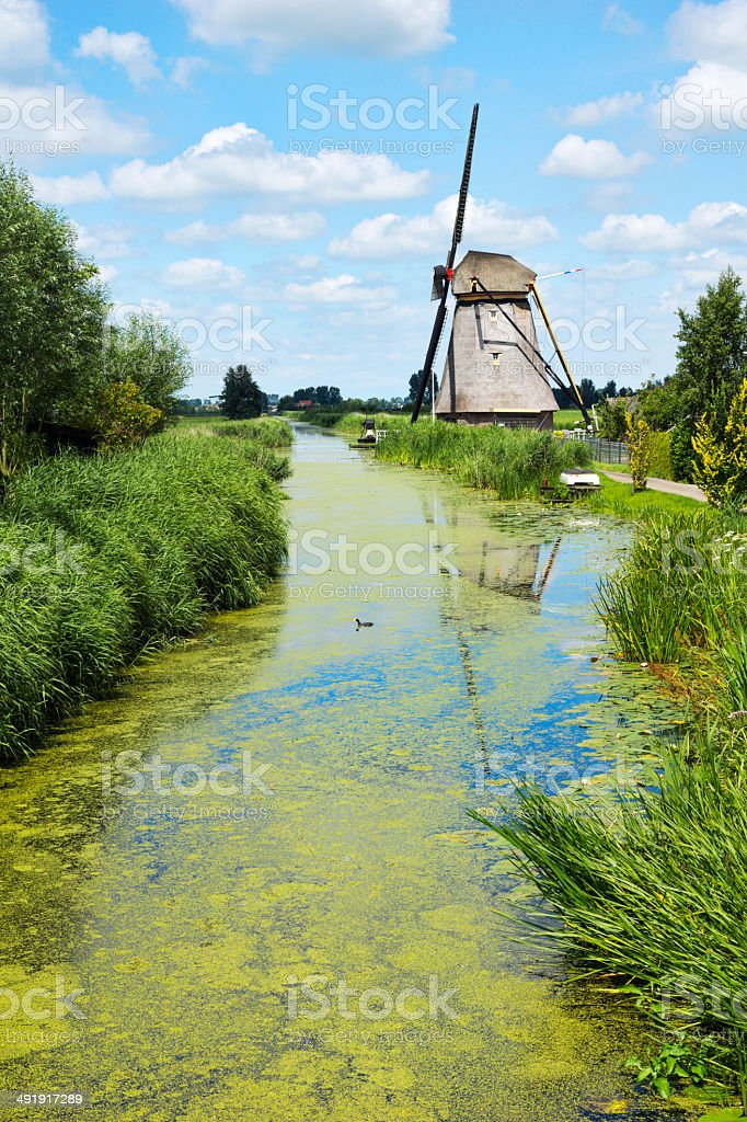 Windmill at canal in the Alblasserwaard stock photo