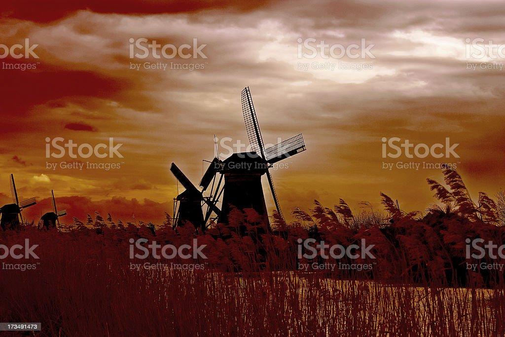 Windmill at sunset. Dutch landscape royalty-free stock photo