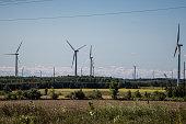 windmill farm in ontario