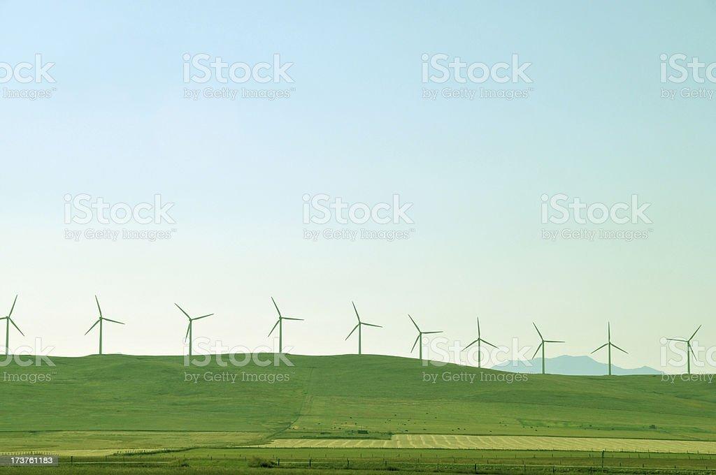 Windmill farm  near Pincher Creek,Alberta,Canada. stock photo