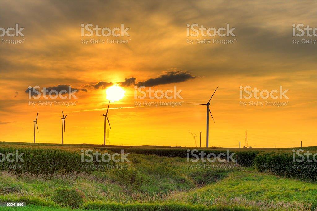 Windmill farm sunset royalty-free stock photo