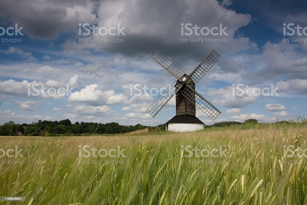 Windmill in a barley field stock photo