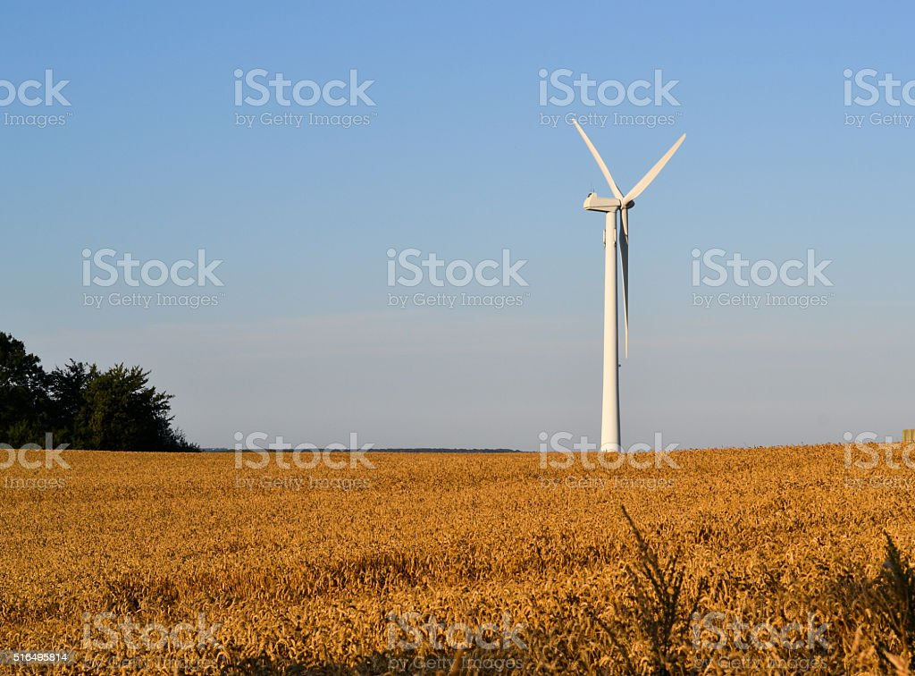 Windmill in field stock photo