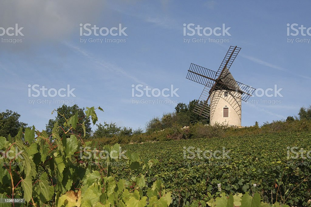 windmill in French vineyard burgundy stock photo