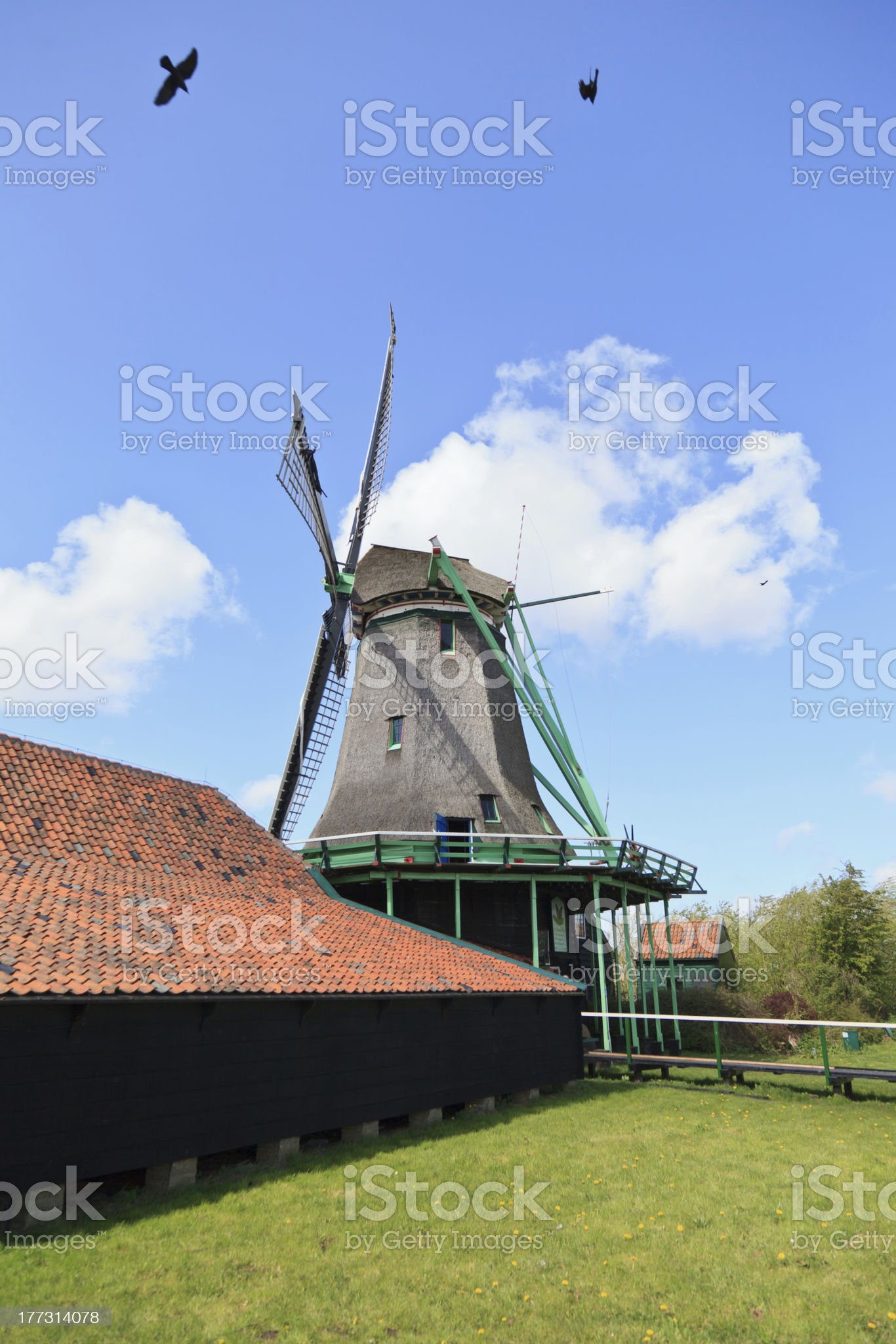 Windmill in holland royalty-free stock photo