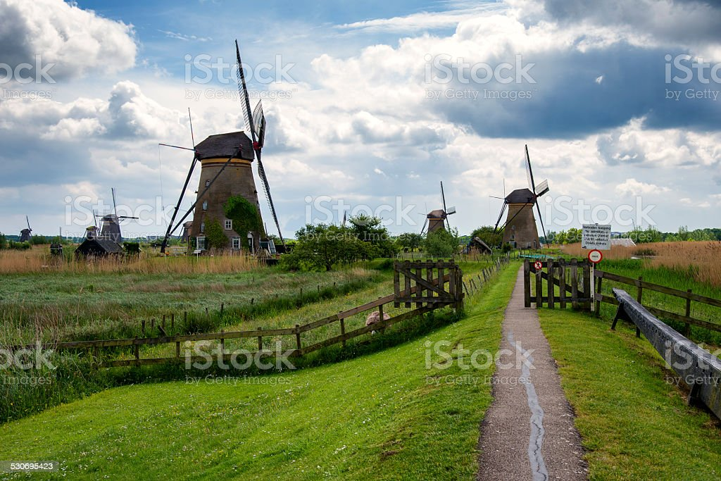 Windmill in Kinderdijk, Holland, Netherlands stock photo