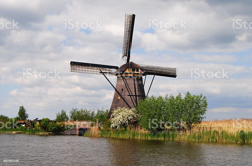 Windmill in Kinderdijk. stock photo