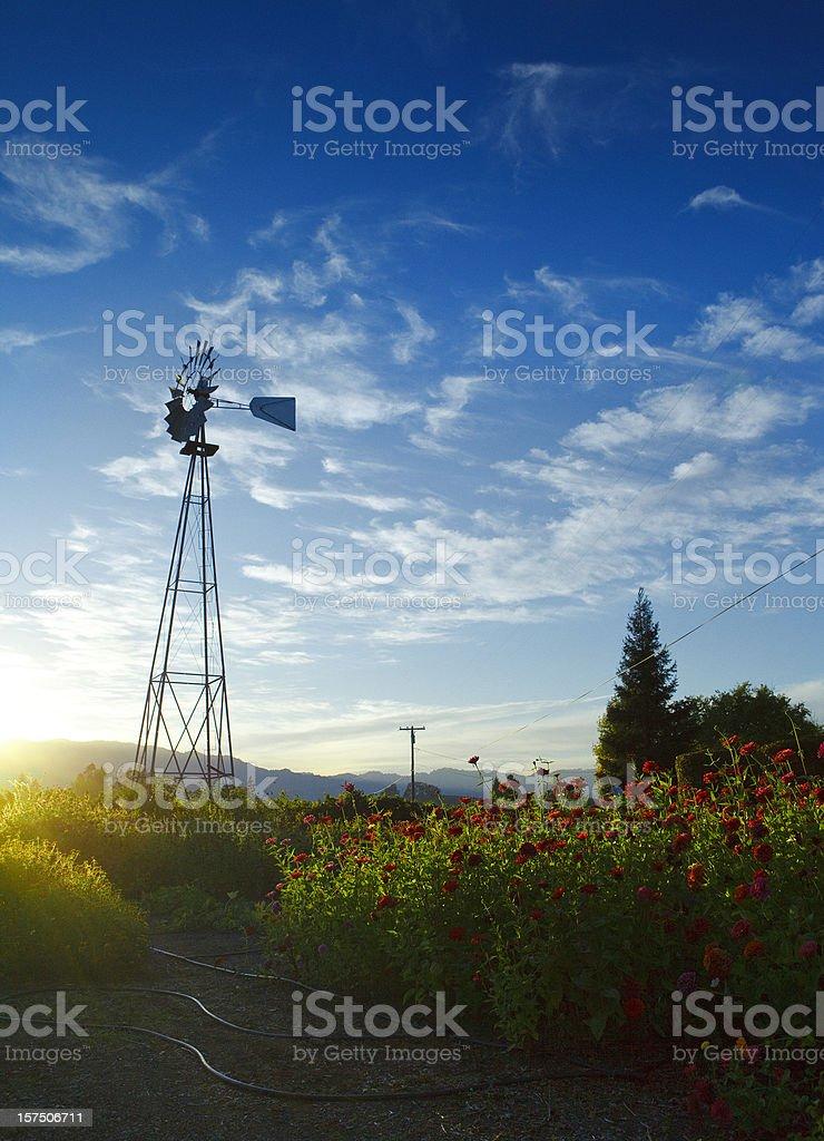 windmill in napa valley stock photo