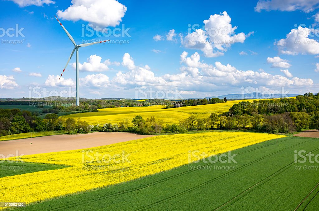 Windmill on the colza field stock photo