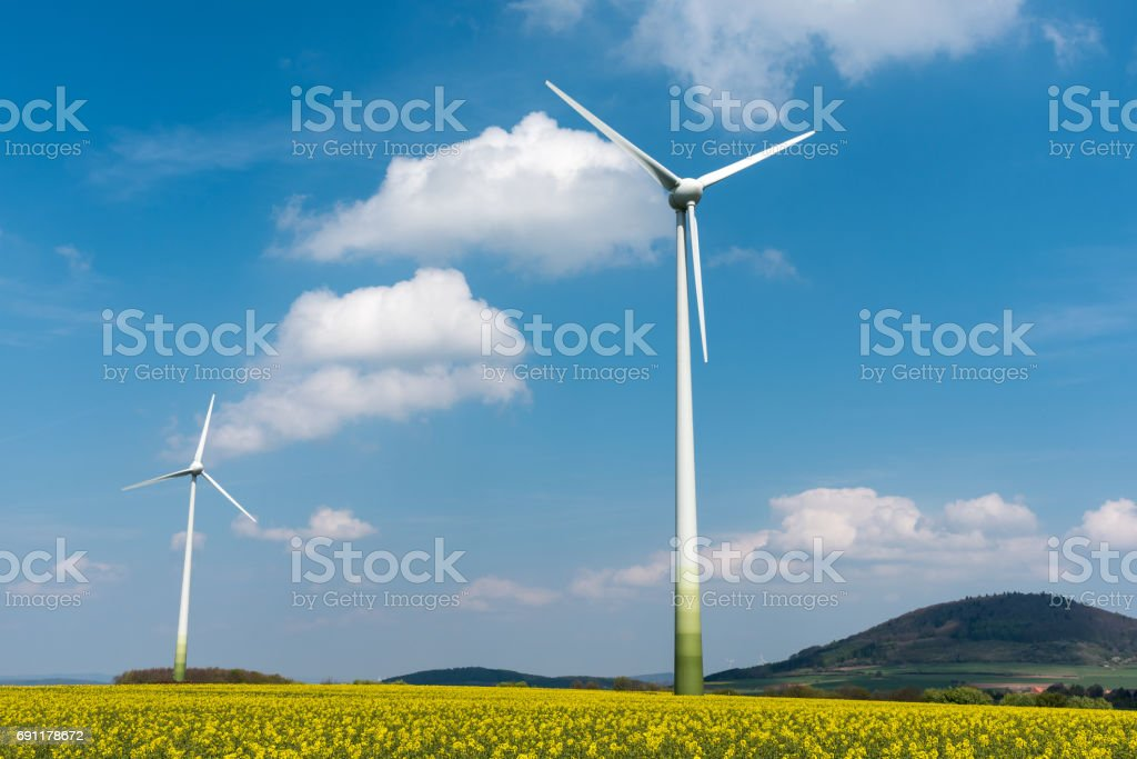 Windmills in a rapeseed field stock photo