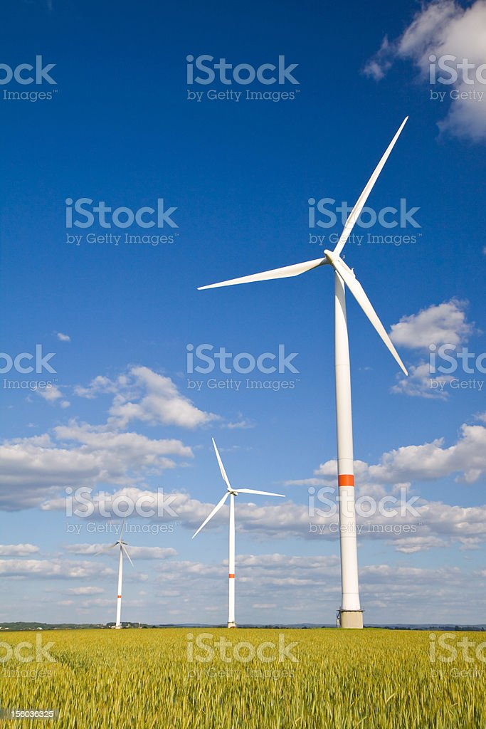 Windmills in crop stock photo