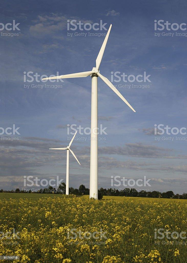 Windmills in front of yellow rape field stock photo