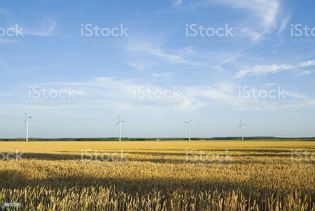 Windmills in holland stock photo