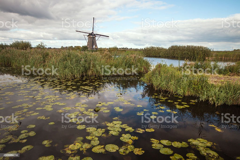 Windmills of the Netherlands stock photo