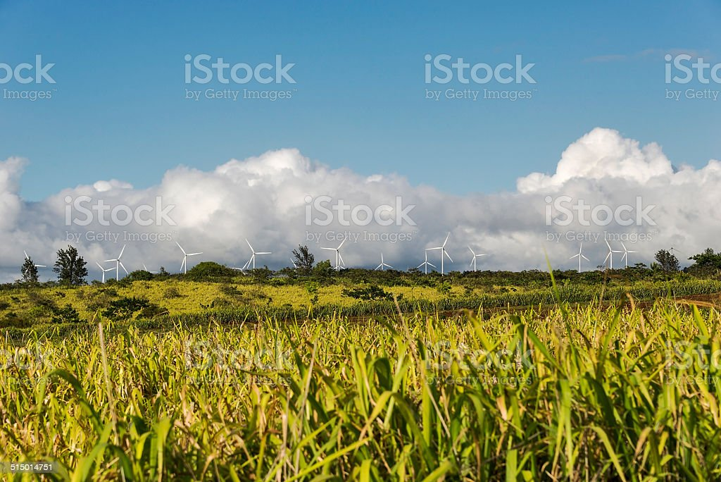 Windmills on the scenic north shore of Oahu stock photo
