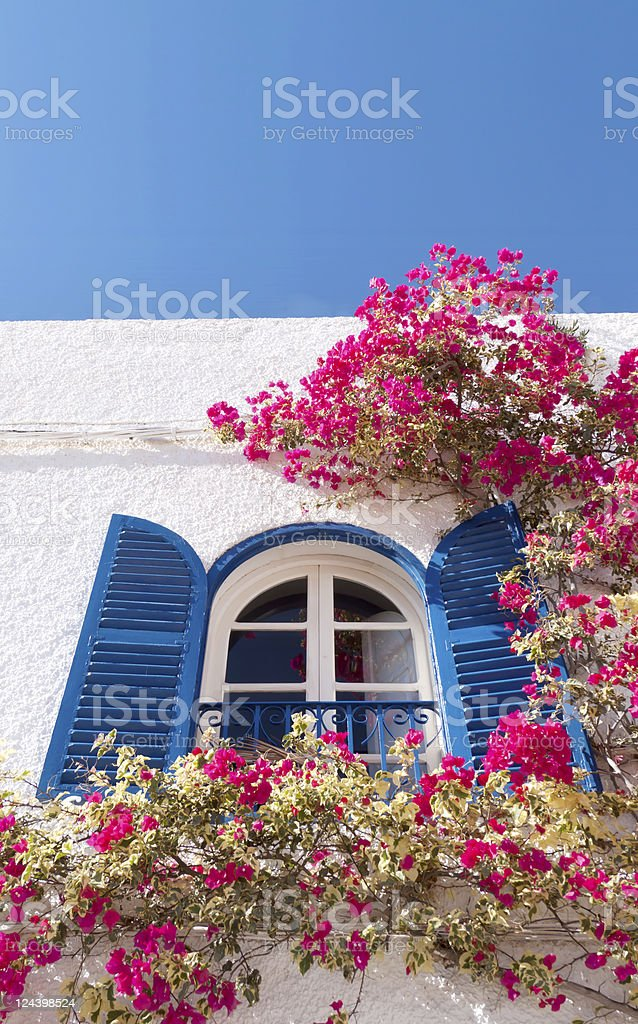 Window and Bougainvillea royalty-free stock photo
