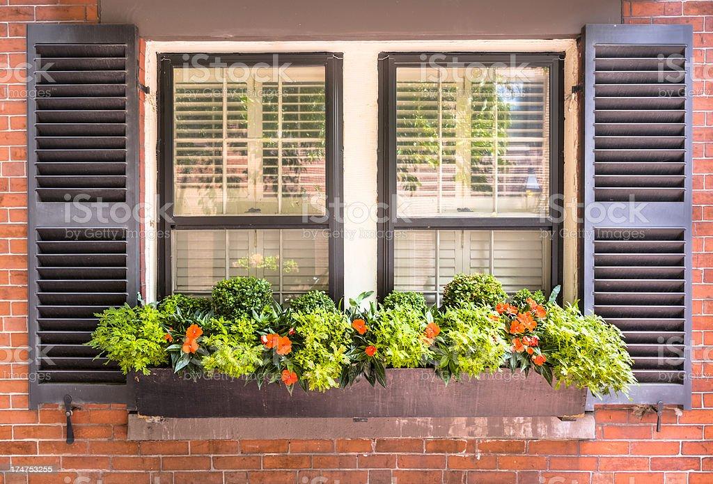 Window and Flower Box stock photo