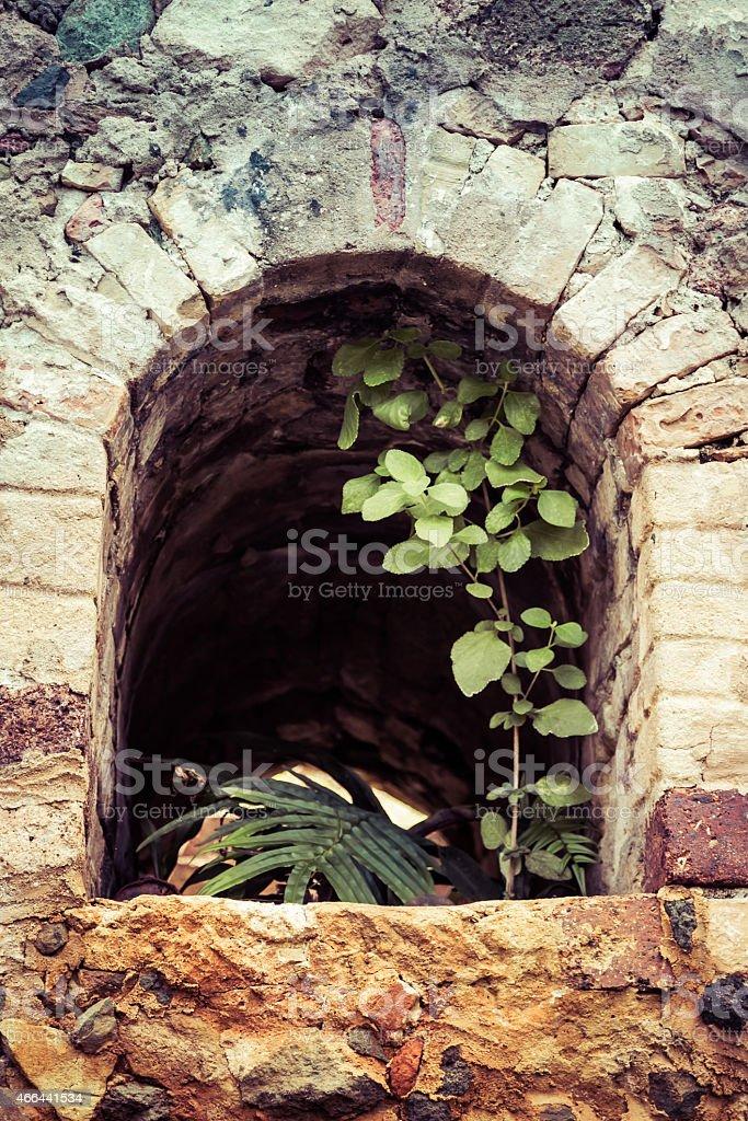 Window Arch stock photo