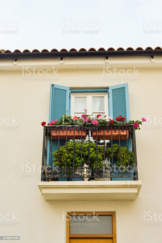 Window balcony with cats on a home in Gibraltar, UK stock photo