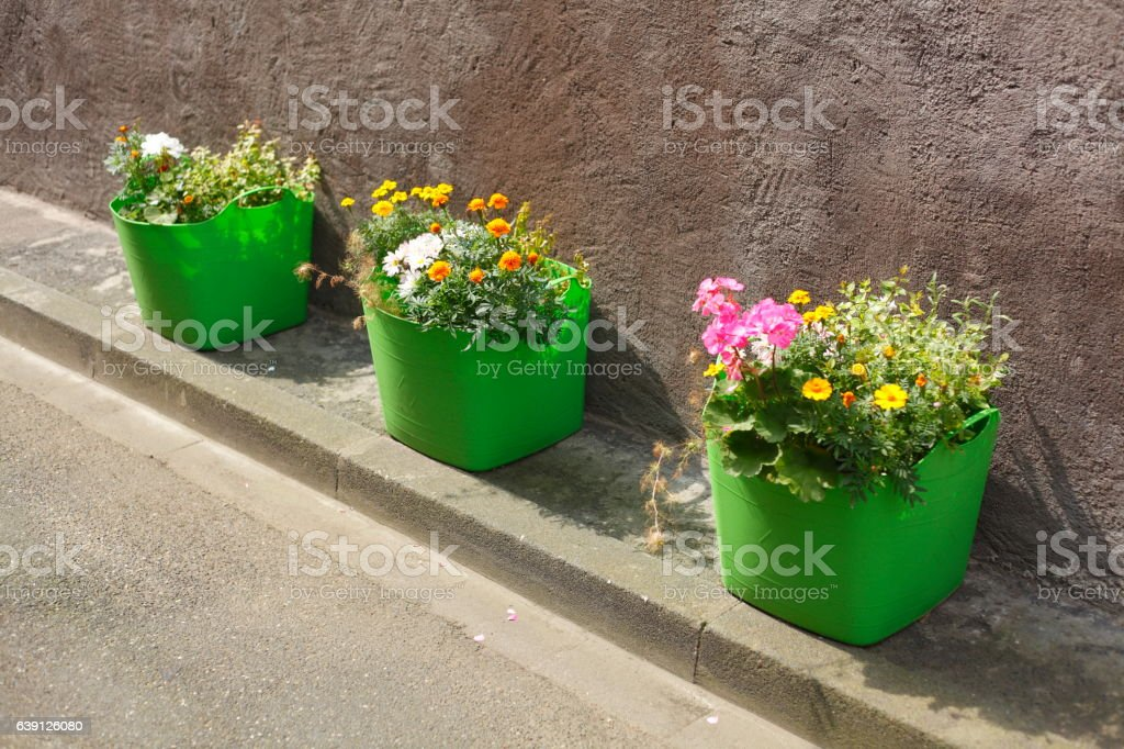 Blumenkasten stock photo