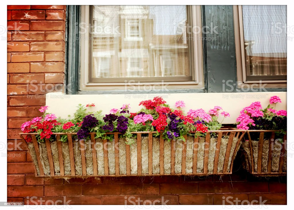 Window box with flowers on older home. iPhone