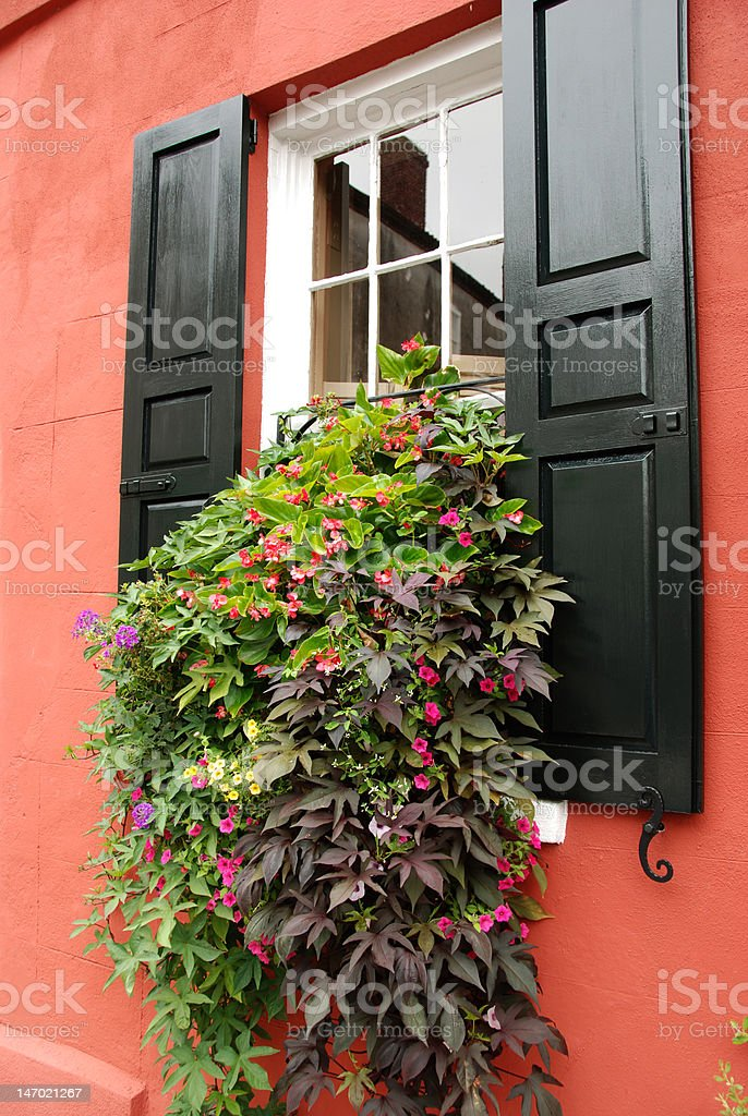 Window Flowerbox Charleston in South Carolina royalty-free stock photo