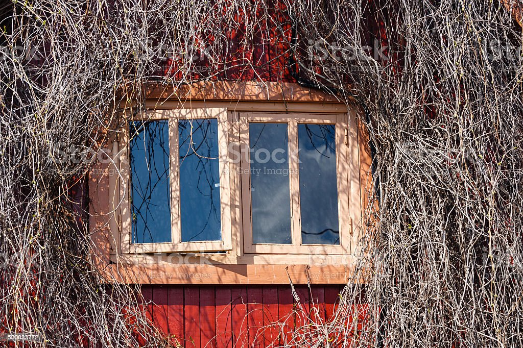 Window in a wall of the wooden house stock photo