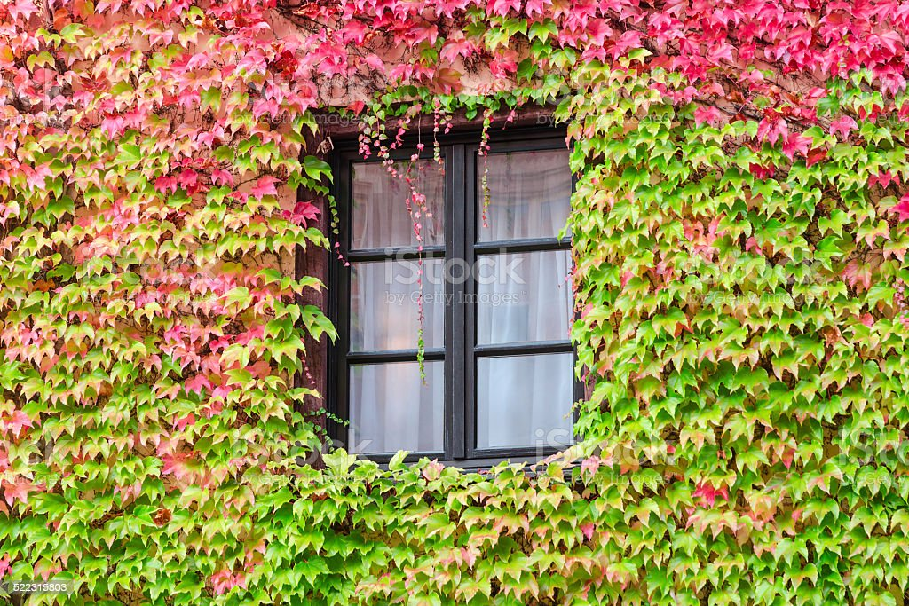 Window in an old traditional European country house stock photo