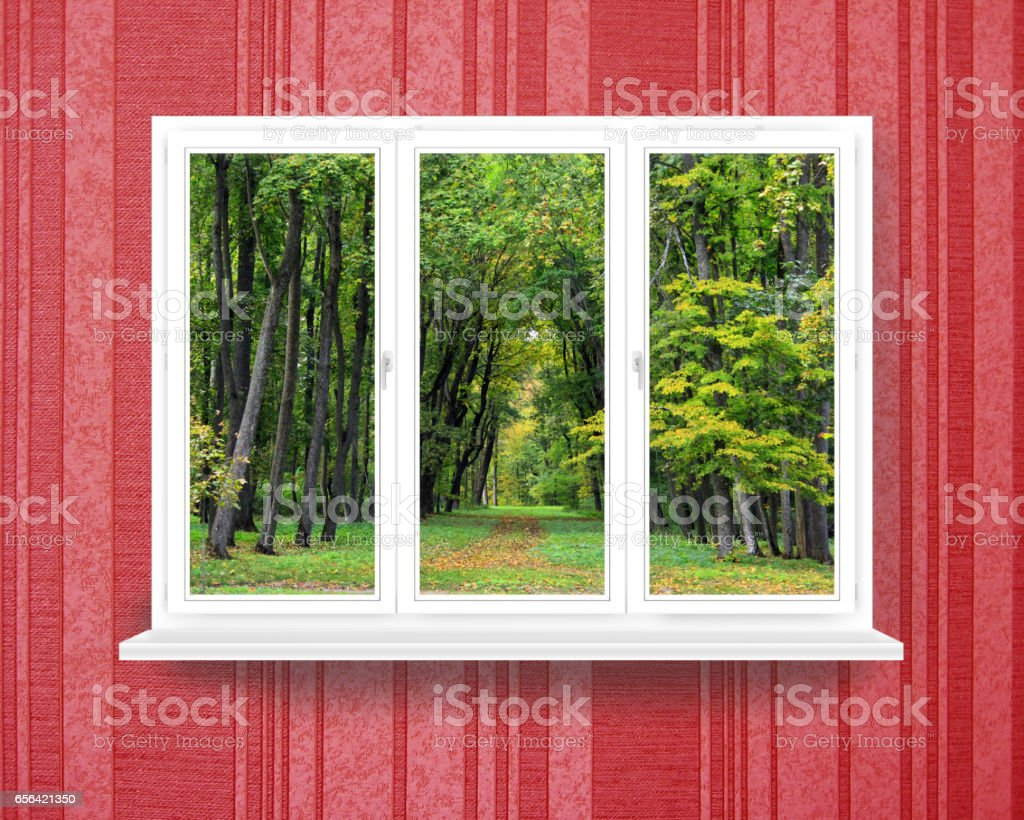 window in the room with view to the forest stock photo
