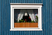 window of a house in the north polar