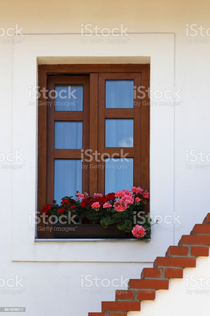 Window of old house with flower stock photo