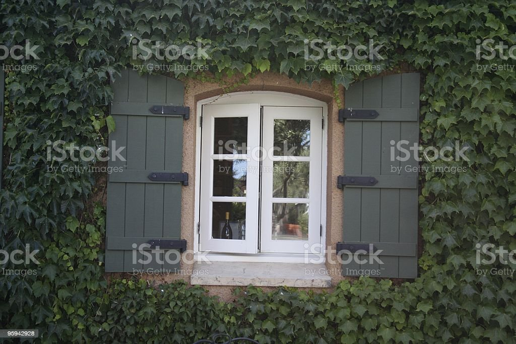 Fenêtre entouré de Lierre photo libre de droits