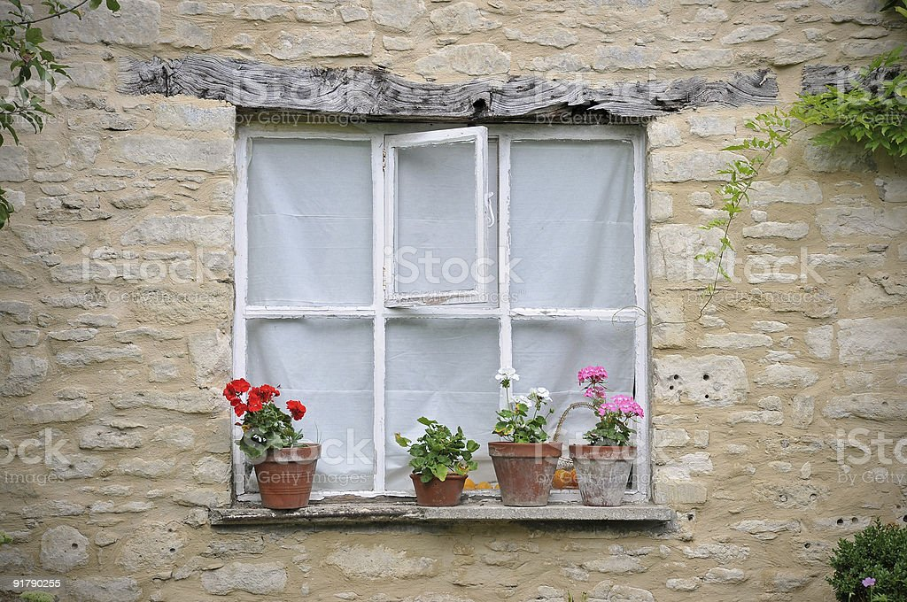 window with flowerpots stock photo