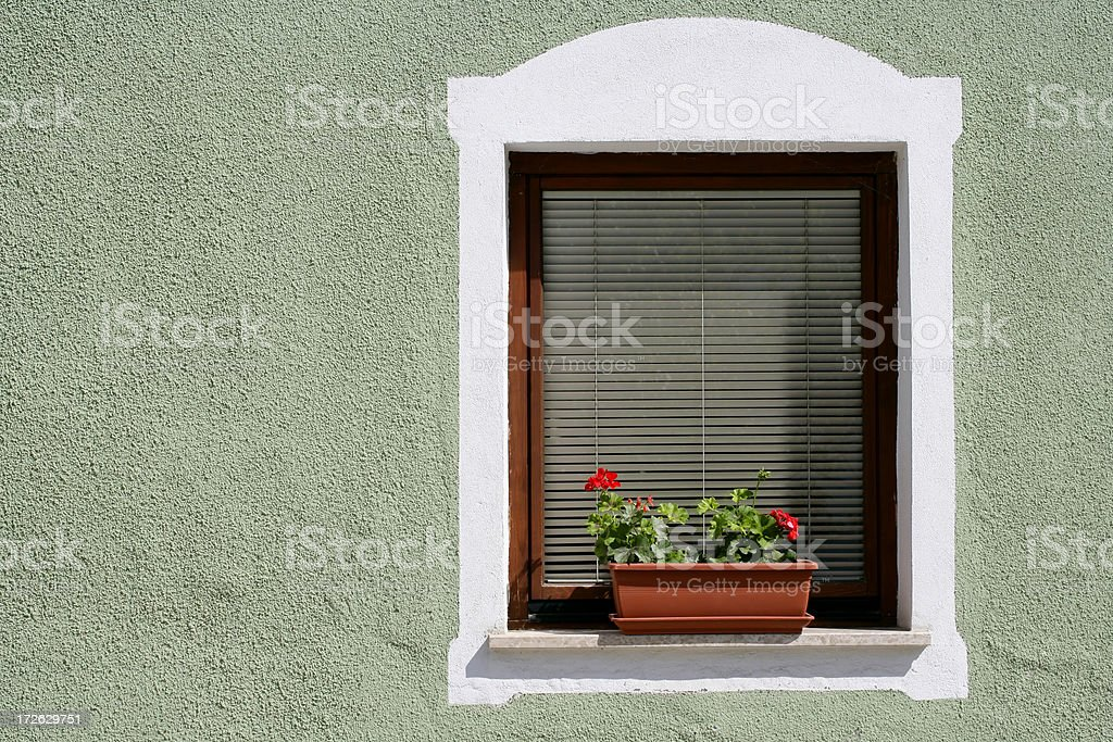 Window with flowers in flower pot royalty-free stock photo