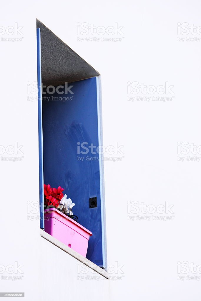 Window with flowers stock photo