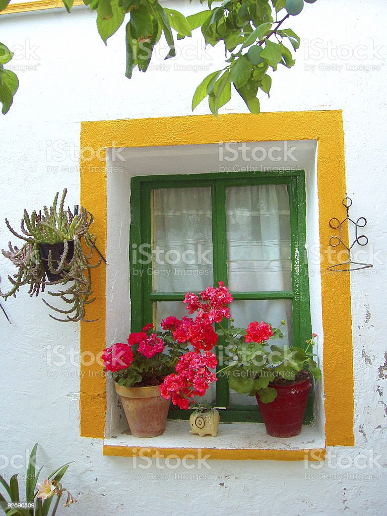 window with geraniums stock photo