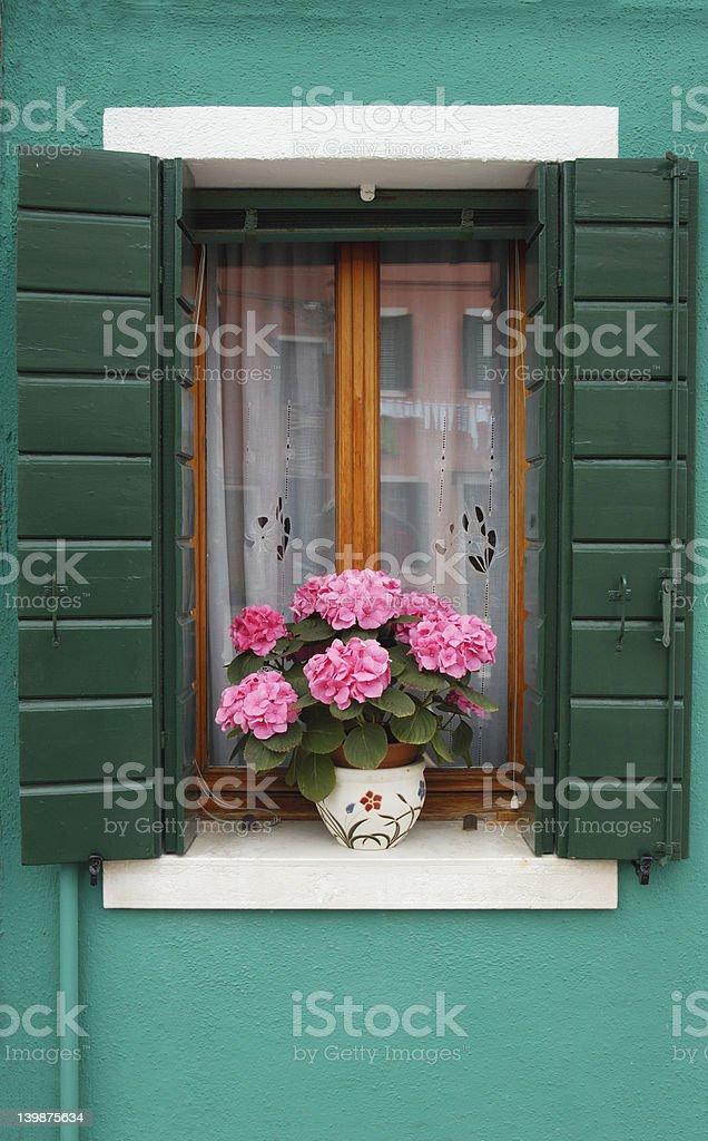 Window with hydrangea royalty-free stock photo