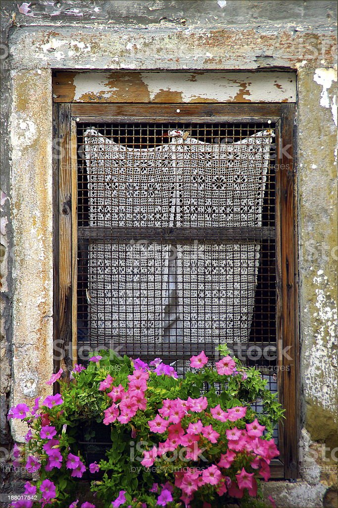 Window with lace curtain stock photo