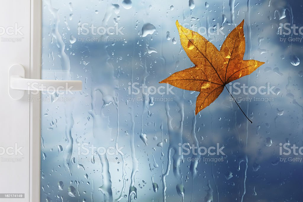 Window With Leaf And Raindrops royalty-free stock photo