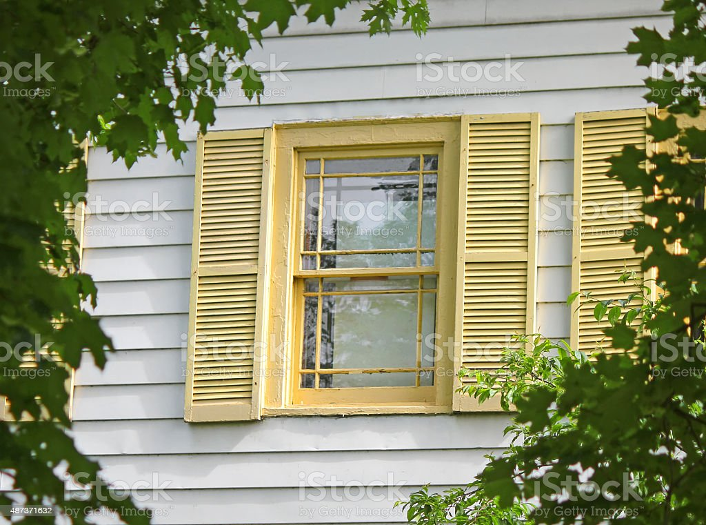 Window with Yellow Shutters in frame of green leaves stock photo