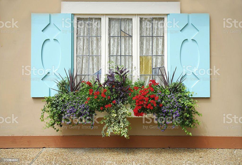 Windowbox stock photo