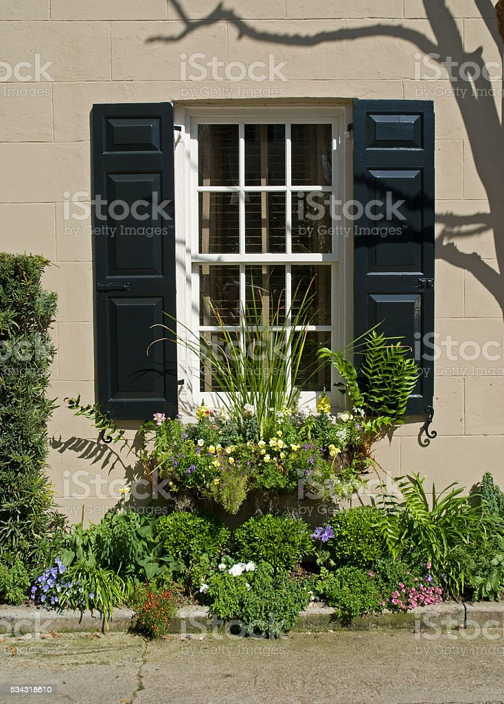 Windows and flowers of Charleston royalty-free stock photo