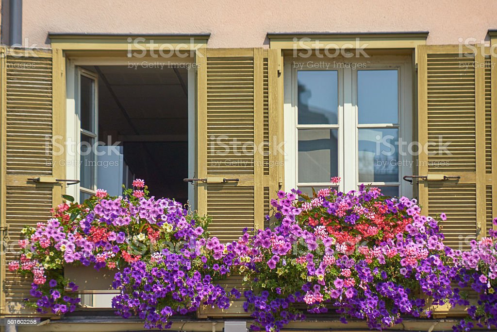 Windows decorated with flowers house stock photo