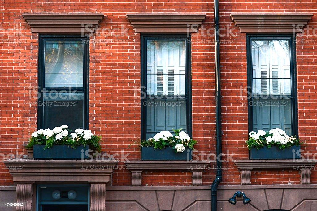 windows of brownstone stock photo